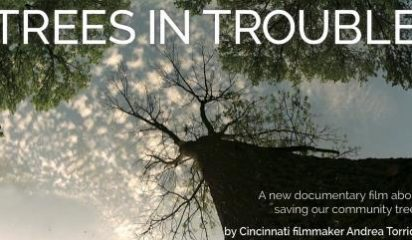 Protecting Our Trees: Trees in Trouble Film and Discussion